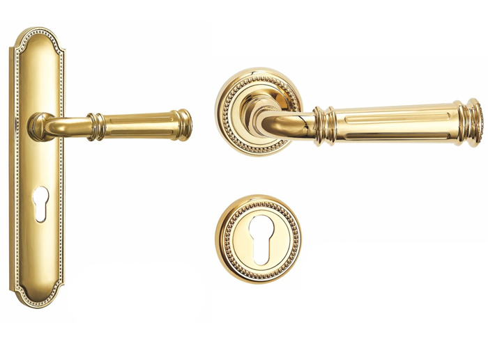 Charmant Gold Door Handles With Backplate